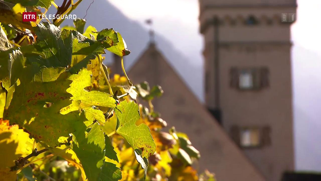 Viticulturs grischuns vulan far anc dapli «vin bio»
