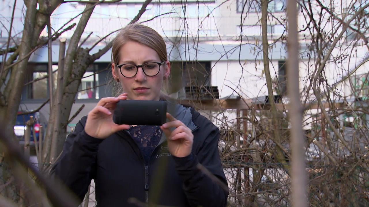 Welches Smartphone die besten Videos macht