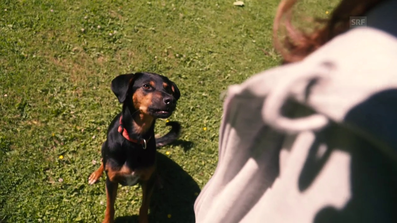 Manou und ihr Hund Pirla