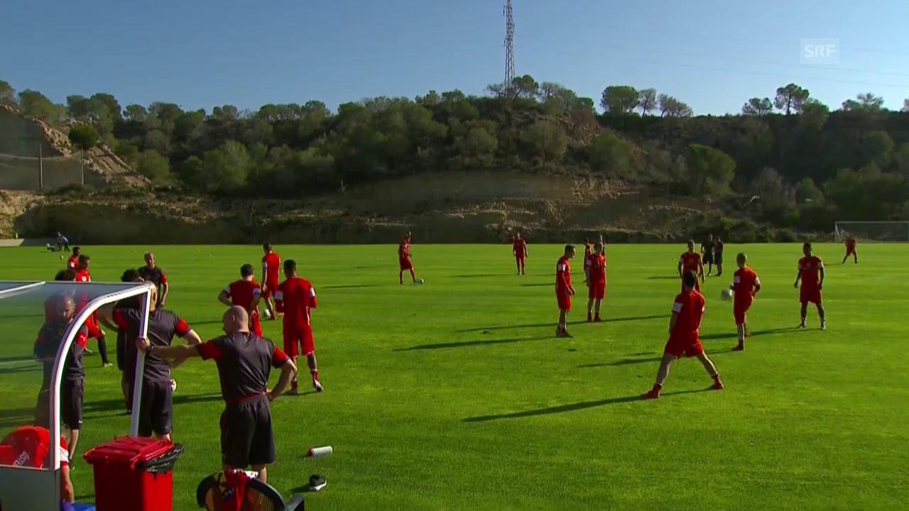 Fussball: Österreich - Schweiz, Vorbereitung der ÖFB-Elf