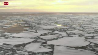 Video «Nordwest-Passage durch Klima-Erwärmung offen» abspielen