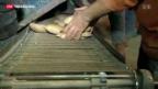 Video «Ägyptische Wirtschaft im Tief» abspielen