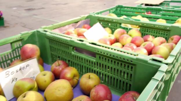 Video «Gesunde Äpfel» abspielen