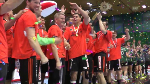 Video «Handball Cupfinal 2016» abspielen