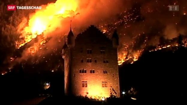Video «Zehn Jahre nach dem Waldbrand von Leuk» abspielen