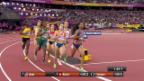 Video «Der 800-m-Halbfinal mit Büchel» abspielen