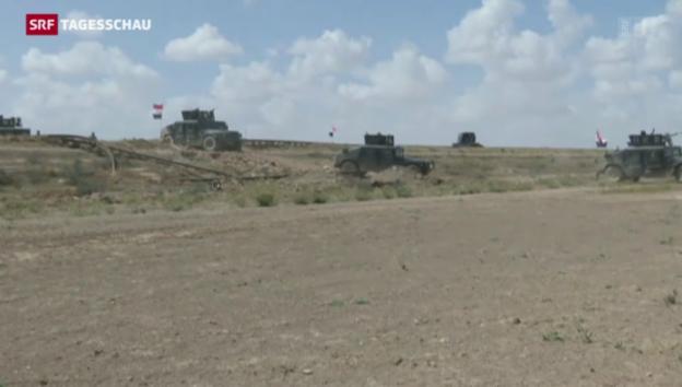 Video «Islamisten aus Tikrit verjagt» abspielen