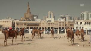 Video «Islamic Economics – Vom Bazar an die Wall Street (Sternstunde Philosophie, 17.5.12)» abspielen