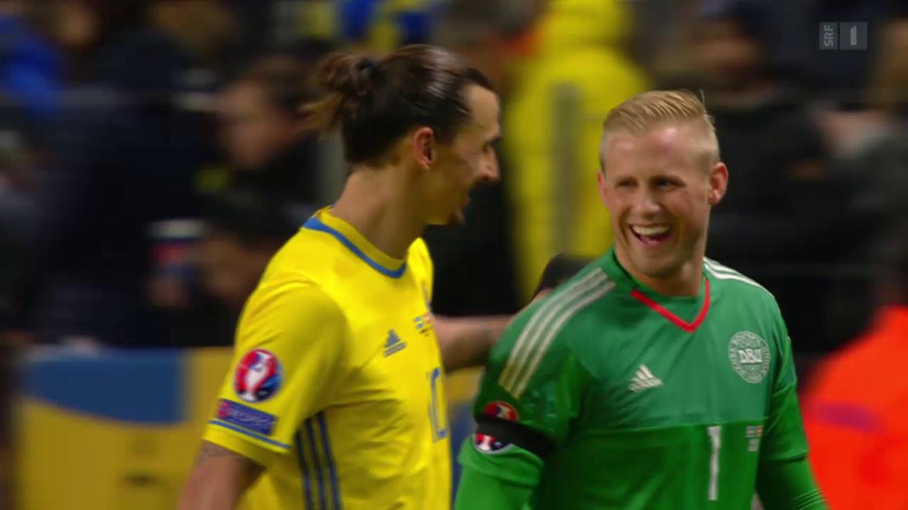 Fussball: EURO-Barrage, Schweden - Dänemark