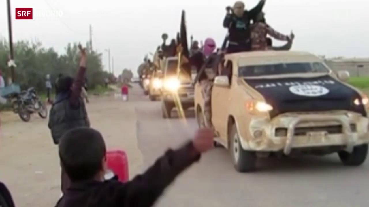 FOKUS: Die IS-Gruppierung auf dem Sinai