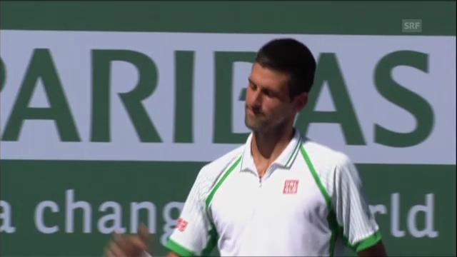 Höhepunkte Djokovic - Tsonga