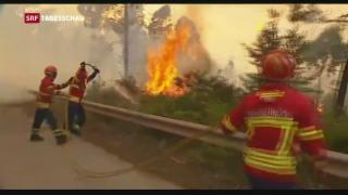 Video «Flammen fressen sich in Portugal weiter vorwärts» abspielen