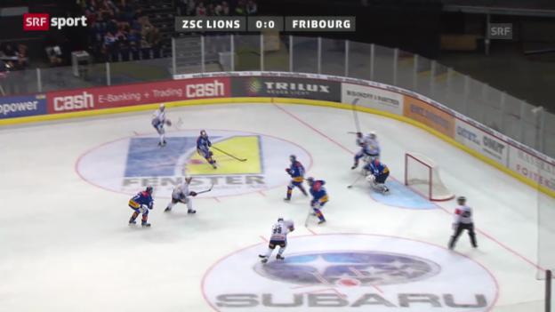 Video «NLA: ZSC Lions - Fribourg-Gottéron» abspielen
