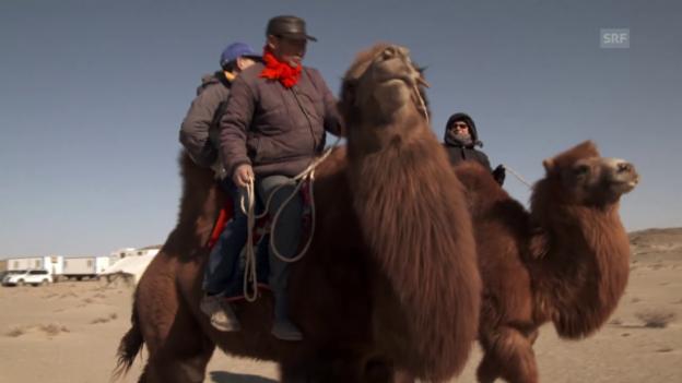 Video «Wüste Gobi: Angst vor dem Endlager vor der eigenen Türe» abspielen