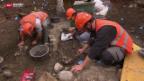 Video «Zwischenlagerung von Skeletten» abspielen