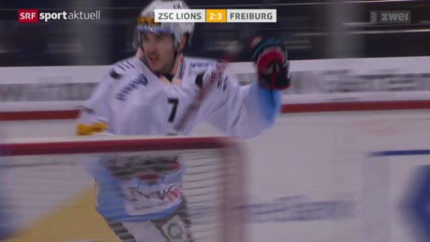Video «Eishockey: ZSC Lions - Fribourg» abspielen
