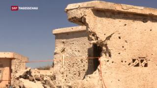 Video «Russland als Ordnungsmacht an den Golanhöhen» abspielen