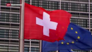 Video «EU lässt der kleinen Schweiz keinen Spielraum» abspielen