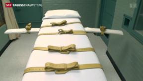 Video «Deutlich mehr Hinrichtungen 2013» abspielen