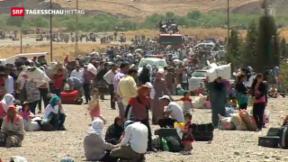 Video «Tausende Syrer fliehen in den Irak» abspielen