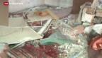 Video «20 Tote und mehr als 100 Verletzte im Gazastreifen» abspielen
