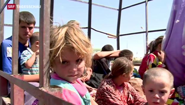 Video «Jesiden – seit Jahrhunderten verfolgt» abspielen