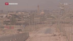 Video «Umkämpftes Mossul » abspielen