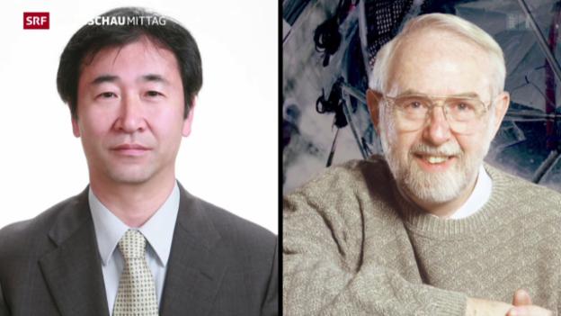 Video «Physik-Nobelpreis geht nach Japan und Kanada» abspielen