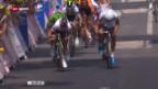 Video «Rad: Zusammenfassung 12. Etappe Tour de France («sportaktuell»)» abspielen