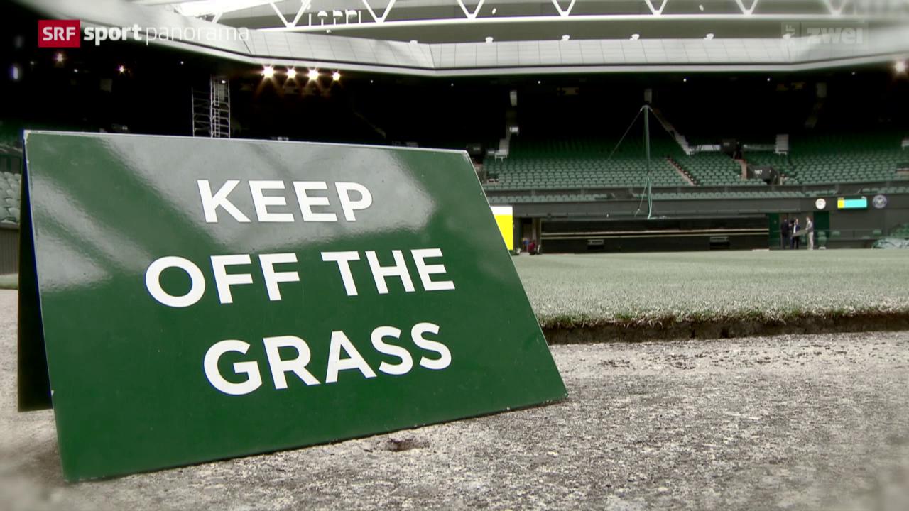 Tennis: Faszination Wimbledon