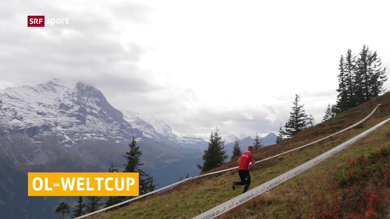 Schweizer OL-Doppelsieg beim Finale in Grindelwald