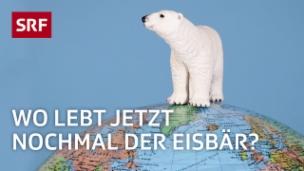Video «Arktis und Antarktis - nie wieder verwechseln» abspielen