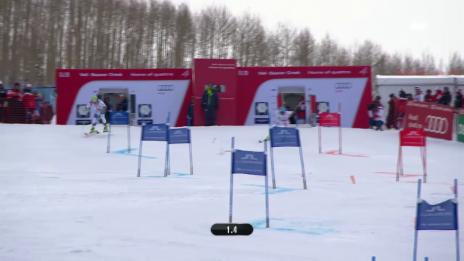 Video «Ski alpin: WM 2015 in Vail/Beaver Creek: Team-Event, Viertelfinal Schweiz - Frankreich» abspielen
