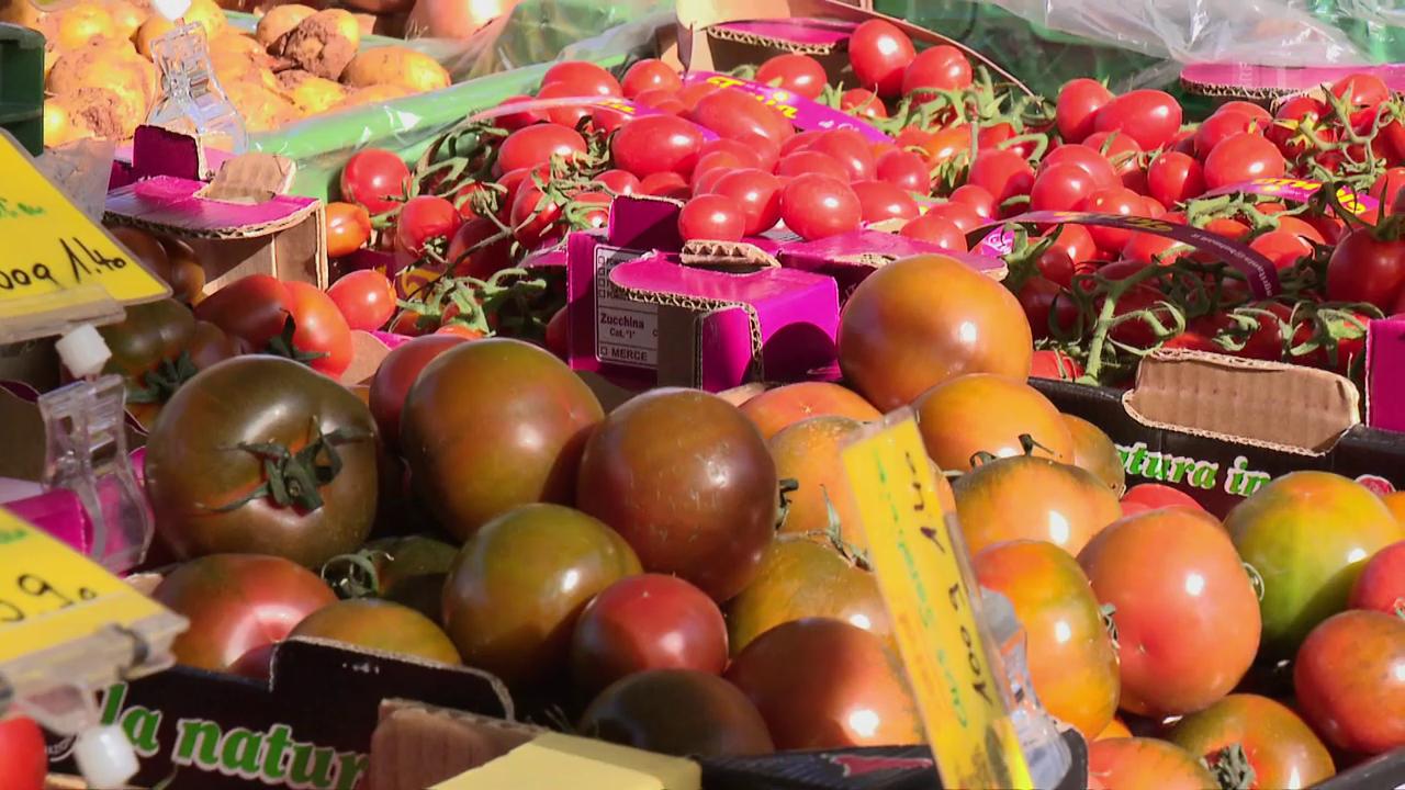 Massenware Tomate - Geschmacklos und trotzdem gesund?