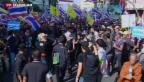 Video «Massendemonstrationen sorgen für Chaos in Thailands Hauptstadt» abspielen