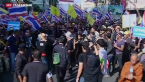 Video «Massendemonstrationen sorgen für Chaos in Bangkok» abspielen