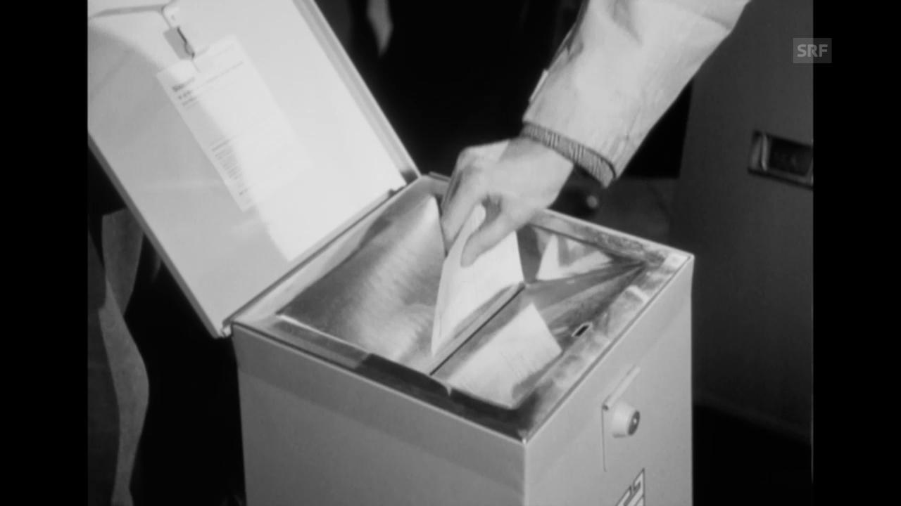 «Demokratie in Gefahr», 1949
