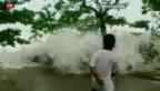 Video «Elend auf den Philippinen» abspielen