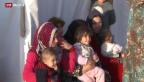 Video «Bundesrat will 3000 Syrer aufnehmen» abspielen