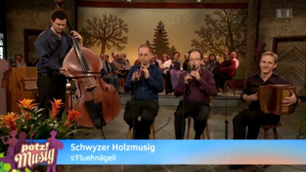 Video «Schwyzer Holzmusig» abspielen