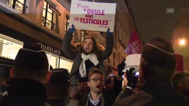 Video «Befürworter der Homo-Ehe demonstrieren in Frankreich» abspielen