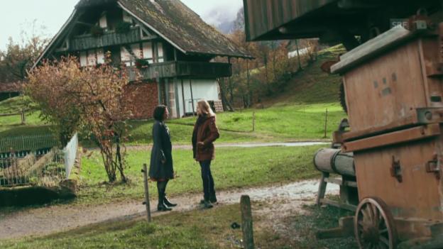 Video «Katrin Rieder, Museum Ballenberg über Heimat (Kulturplatz, 6.11.2013)» abspielen