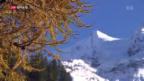 Video «Der Herbst als neuer Tourismus-Winter?» abspielen
