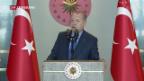 Video «Lira – das sagen die Politiker» abspielen
