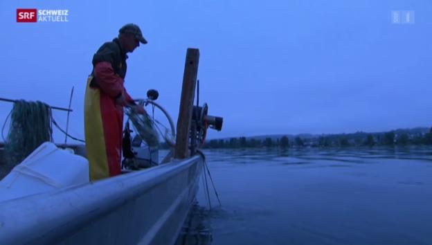 Video «Berufsfischer werden: ein mutiger Schritt in schwierigen Zeiten» abspielen