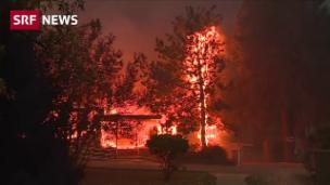 Video «Kalifornische Waldbrände vertreiben Tausende» abspielen