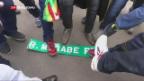 Video «Demonstranten in Feierlaune» abspielen
