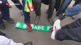 Video «Demonstranten in Feierlaune » abspielen
