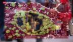 Video «Anstieg der Chlamydien-Fälle» abspielen