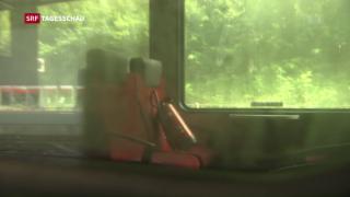 Video «Ratlose Polizei» abspielen